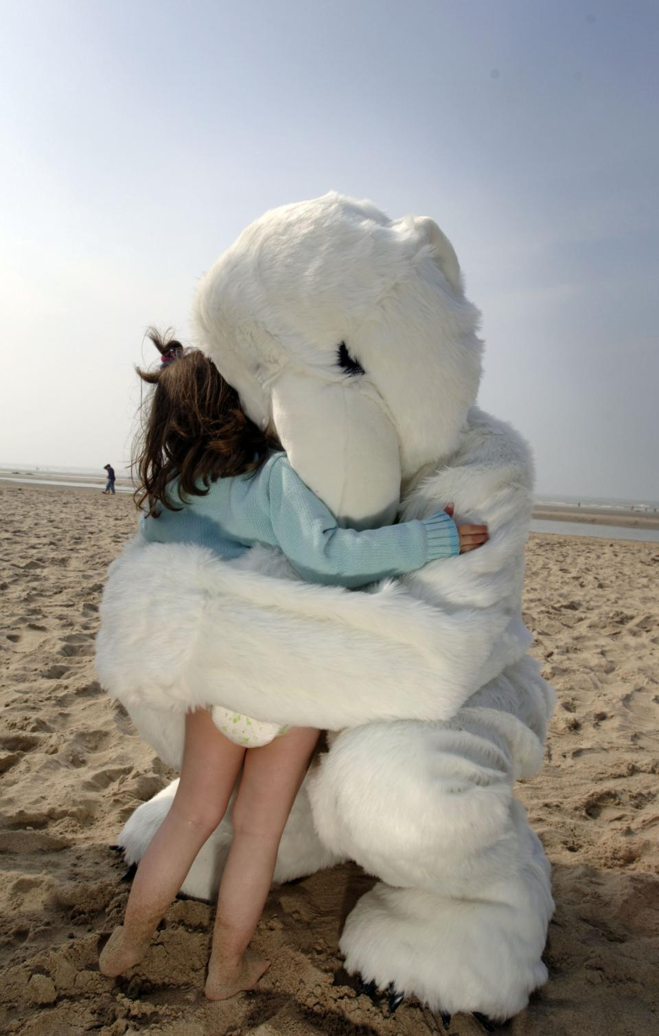 Polar bear –© Bob Van Mol