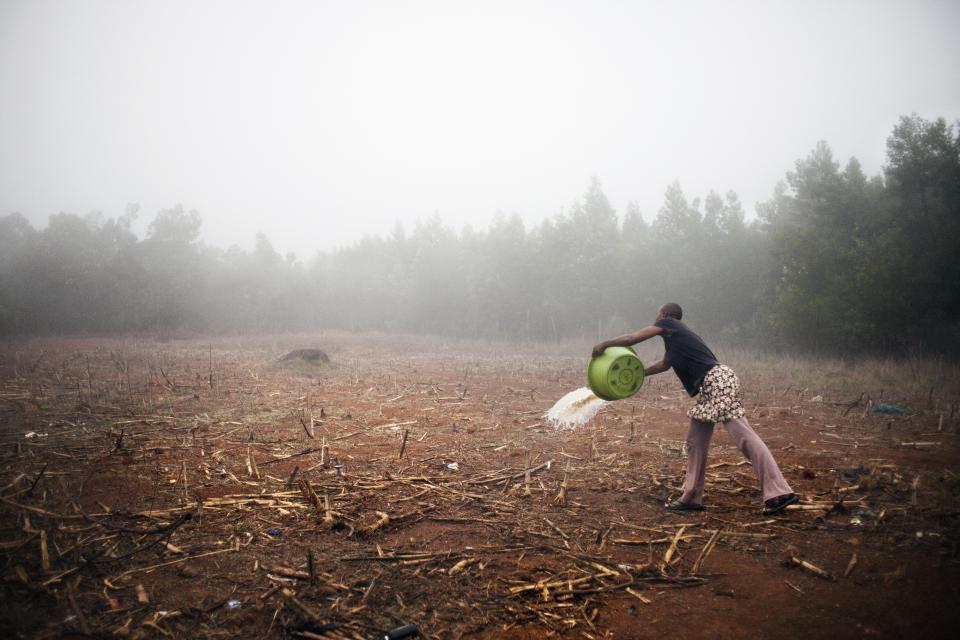 Africa 3 –© Bob Van Mol