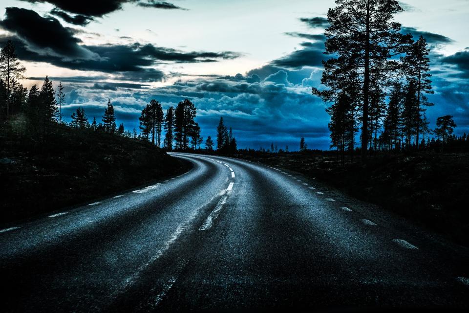 Zweden 2015 –© Bob Van Mol